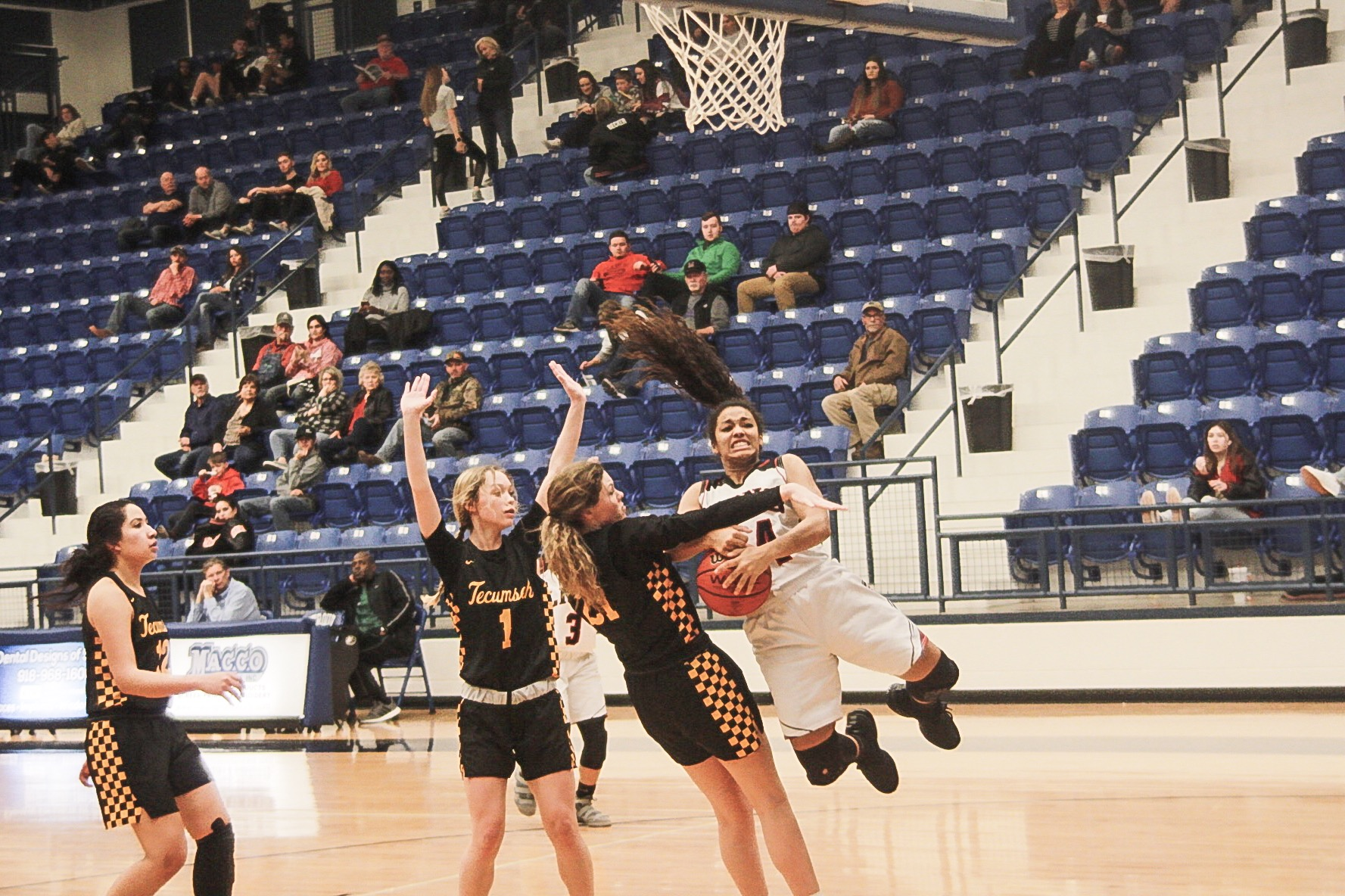 Luther Lady Lion Stanfield earns first triple double of season